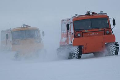Вездеходы Тайга мчатся по снегу